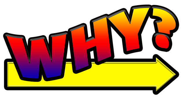 Why, Who, What, When, Where, How, Question, Think, Act
