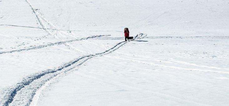 Snow, Slide Down, Snow Slope, Slope, Winter, Mountain