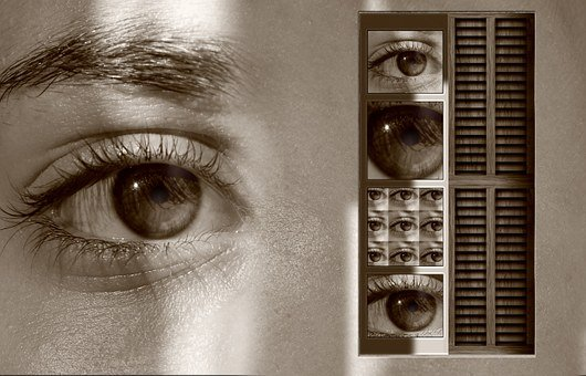 Eyes, See, Point Of View, Window, Sensation, Charm