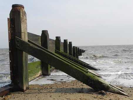 Groyne, Fence, Sea, Beach, Defence, Tide, Sand, Wooden