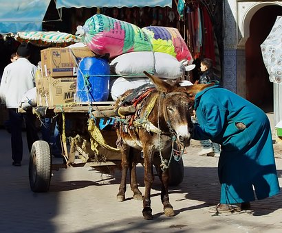 Morocco, Marrakech, Hitch, Cart, Transport, Loading