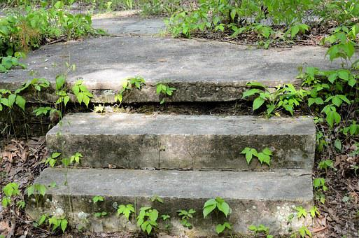 Nature, Steps, Outdoor, Summer, Green, Stone, Travel