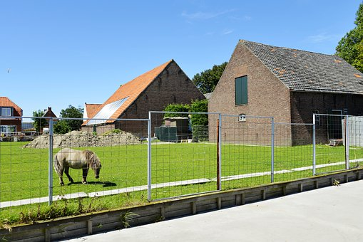 Horse, House, Grass, Animal, Ranch, Farm, Grassland
