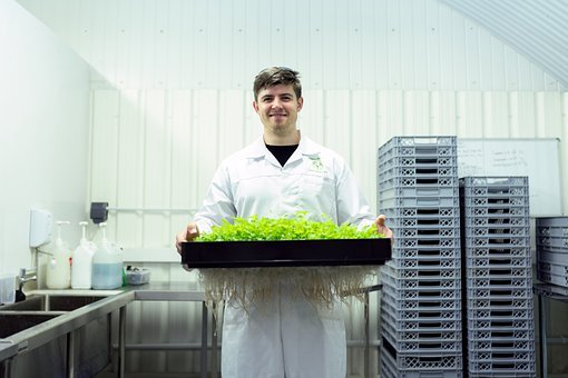 Engineer, Engineering, Indoorfarm, Farming, Agriculture
