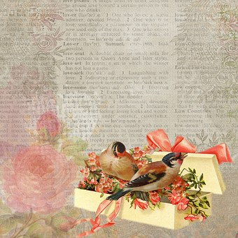 Background, Vintage, Birds, Gift, Bow, Box, Flower