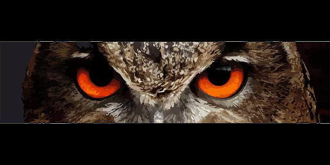 Sowa, Bird, Eyes, Pharaoh Eagle Owl, Birds, See