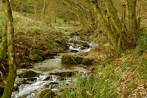 Black Forest, Walpertstal, Bach, Splash, Creek, Idyllic