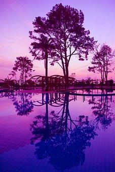 Dawn, Sunset, Sunrise, Purple, Lilac