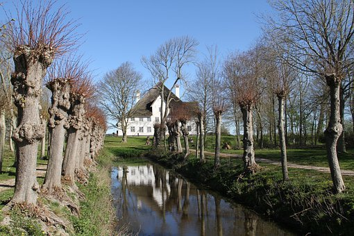 Haubarg, Joke Word, Nordfriesland, Spring