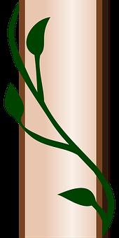 Vine, Climbing Plant, Clamberer, Plant, Creeping Plant