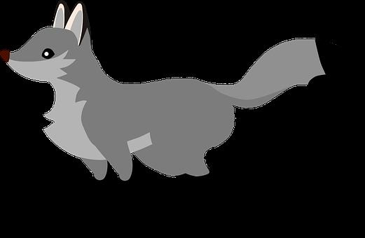 Gray Fox, Fox, Nature, Animal, Wildlife, Grey, Predator