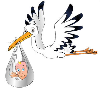 Stork, Baby, Birth, Young, Pregnant, Sky, Rattle Stork