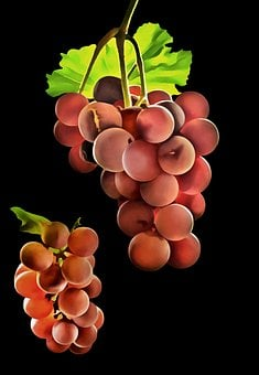 Abstract, Transparent Background, Grapes, Template