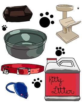 Cat, Kitten, Bed, Tree, Kitty, Litter, Collar, Bowl