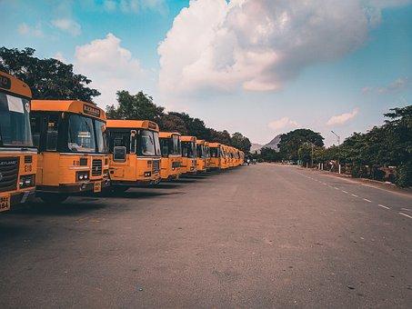 Buses, Bus, Road, Cloud, Trees, Path, Transportation