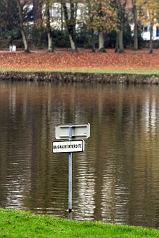 Sign, Swimming Prohibited, Lake, Water, Green