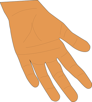 Hand, Palm, Fingers, Human, Skin, Giving, Thumb, Open