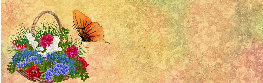 Flower, Butterfly, Banner, Web, Internet, Website
