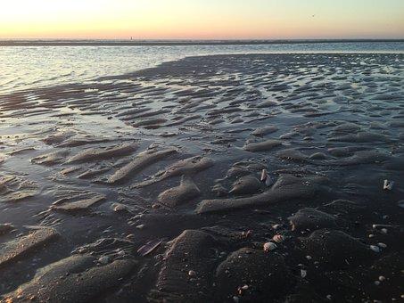 Netherlands, Beach, Sea, Sand, Coast, Holland, Nature
