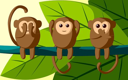 Jungle, Monkey, Three, To Hear, Talk