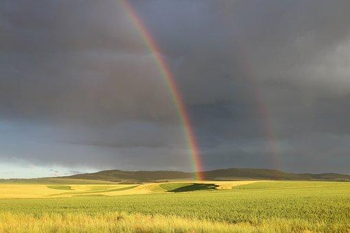 Rainbow, Idaho, Oudoors, Nature, Summer, Double, Field