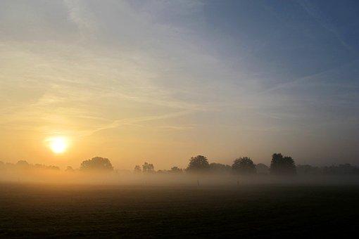 Fog, Veil, Mystical, Atmosphere, Mood, Landscape, Steam