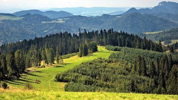 Mountains, Landscape, Beskids, Radziejowej Band