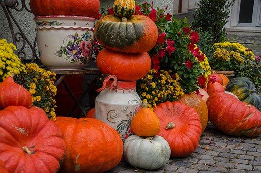 Autumn, Pumpkins, Decoration, Harvest, Colorful