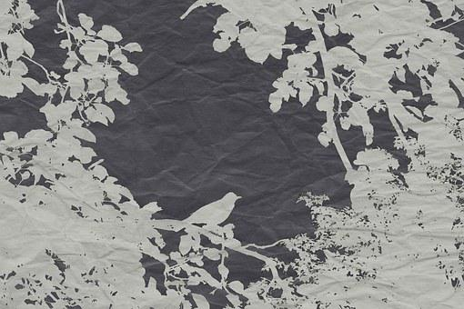Veiling, Effect, Bird, Road, Vector, Nature, Tree