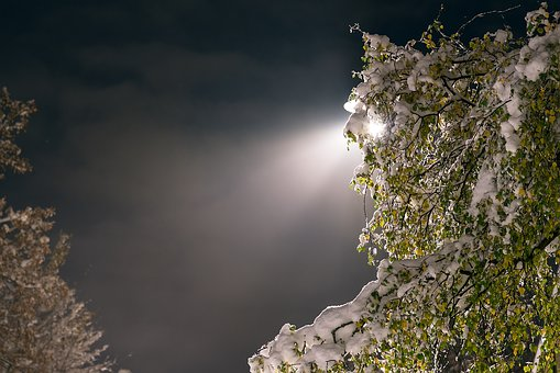 Snow, Lamppost, Night, Cold, Ice, Light, Rays, Winter