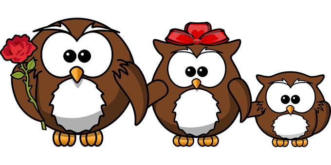 Owl, Animal, Bird, Funny, Family, Father, Mother, Child