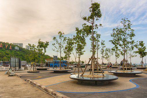 Pattaya, Thailand, Asia, Bali Hai, Trees, Plant