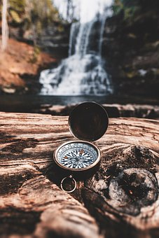 Compass, Nature, Survival, Trees, Forest
