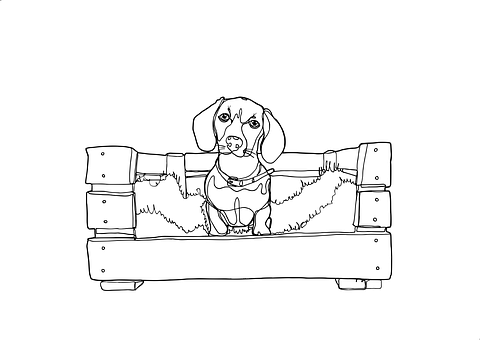 Dachshund, Dog Easter, One Line Illustration