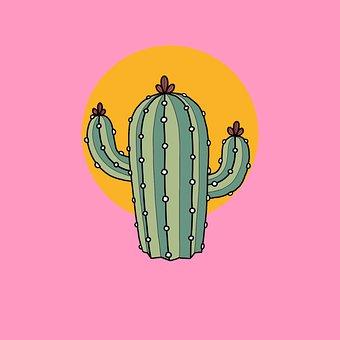 Plant, Needle, Cacti, Flora, Nature, Botanical, Cactus