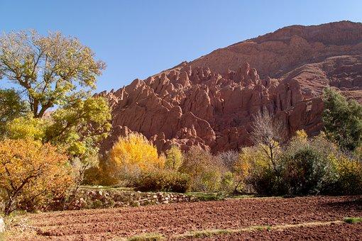 Morocco, Canyon, Monkey Paw Mountains, Monkey, Finger