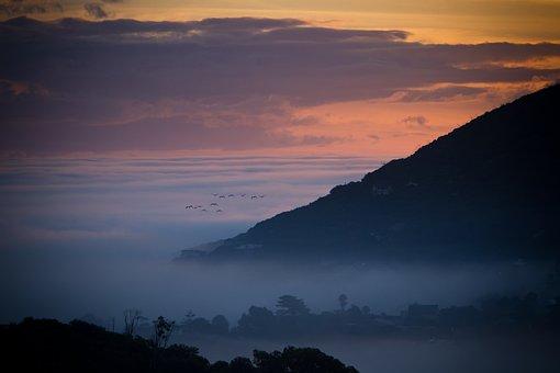 Landscape, Birds, Sunset, Clouds, Nature