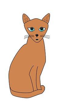 Cat, Green Eyed Cat, Pet, Animal, Feline, Green-eyed