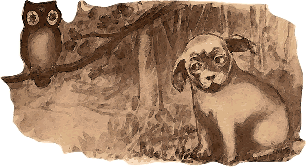 Dog, Owl, Forest, Woods, Nature, Trees, Halloween