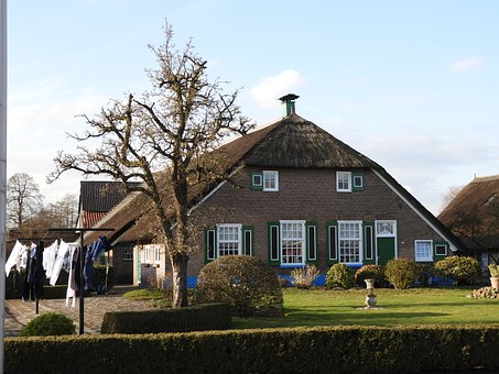 Netherlands, Are Easy To Reach, Farm, Spring