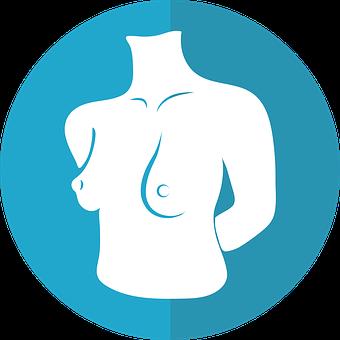 Breast Icon, Female Torso, Woman, Female, Breast, Adult