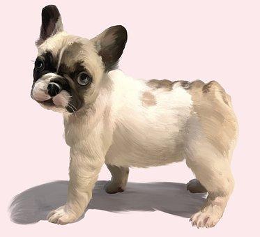 Puppy, Pet, Painting, Oil, Art, Box, Poster, Bulldog