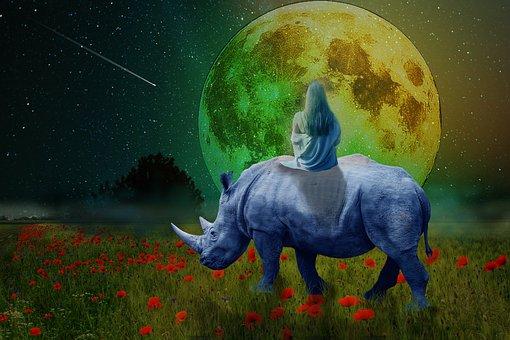 Rhino, Animal, Cartoon, Design, Rhinoceros, Symbol