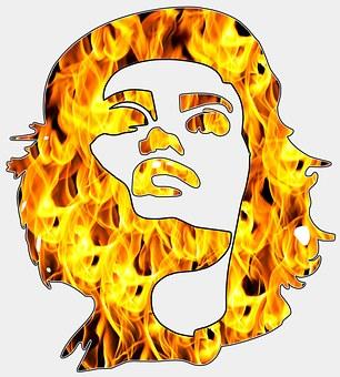 Woman, Head Shot, Silhouette, Face, Head, Female, Hair