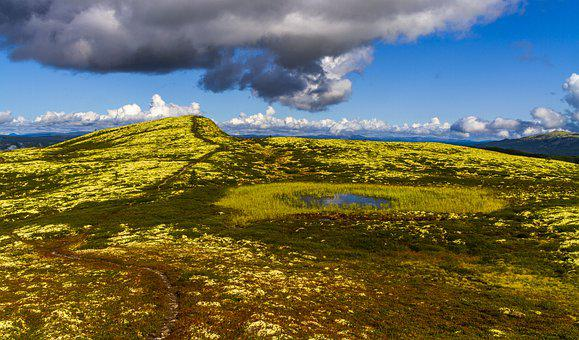 Landscape, Mountain, Path, Water, Marsh, Heather, Sky
