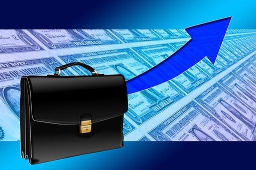 Briefcase, Success, Curve, Dollar, Come Forward, Career