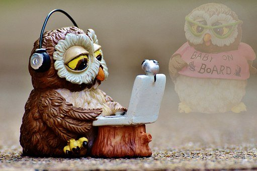 Owl, Miss, Pregnant, Baby, Longing, Thoughts, Love