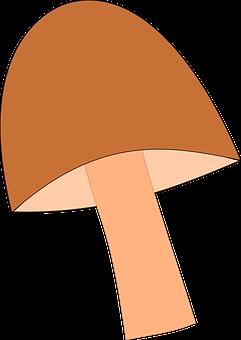 Mushroom, Forest, Autumn