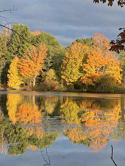 Fall, Trees, River, Reflection