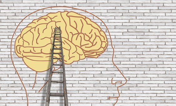 Brain, Psychology, Think, Thought, Wall, Head, Science